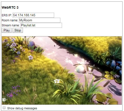 Streaming Using WebRTC | EvoStream